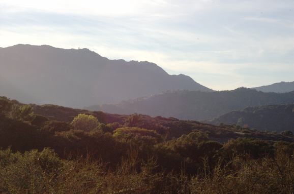 Der Topanga Canyon (Foto: © Rneches (Rneches) [CC BY 2.5], via Wikimedia Commons)